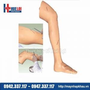 Mô hình thực hành phẫu thuật và khâu da chi dưới
