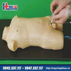 Mô hình thực hành lấy máu động mạch và tĩnh mạch đùi